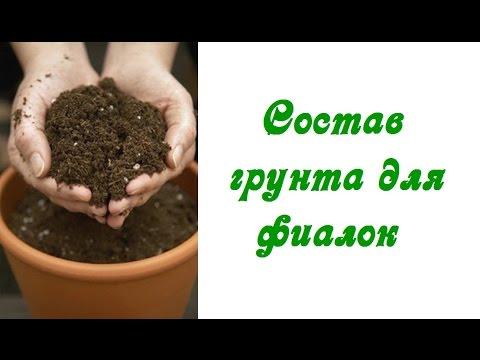 Состав грунта для фиалок (сенполий)