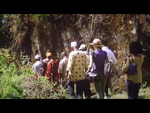 OUR SALONE HISTORY: BUNCE ISLAND SIERRA LEONE & US CONNECTION