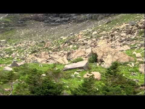 BBC Documentary || Nature Documentary Glacier National Park 1080p