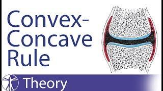 Kaltenborn Concave-Convex Rule