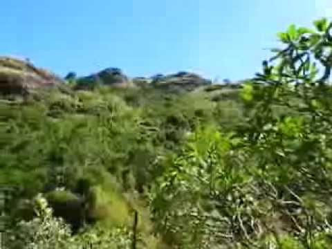 Lush Green Hills Around Garden Sleeping Giant - Nadi, Viti Levu, Fiji, South Pacific