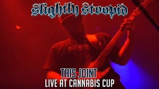 This Joint - Slightly Stoopid (Live at Cannabis Cup)
