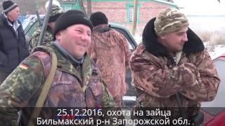 Охота на зайца(Охота на зайца в Запорожской области. Воскресенье, 25 декабря 2016 г., зима, снег и зайцы., 2016-12-27T16:51:23.000Z)