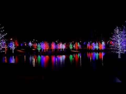 Dallas String Quartet and the Vitruvian Lights in Addison, Texas