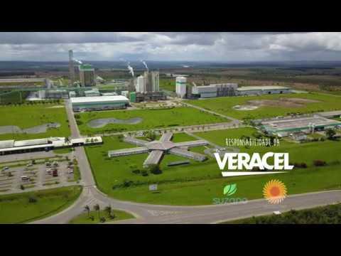 Conheça a RPPN Estação Veracel