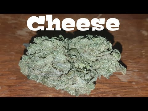 Canadian Cannabis Strain Review - Cheese