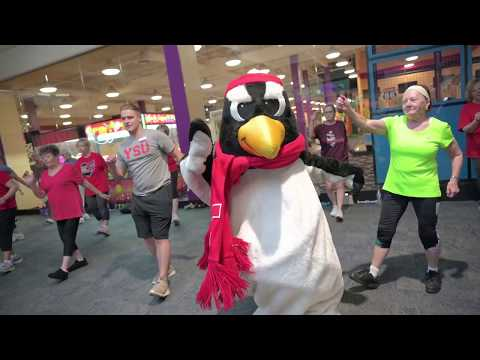 Youngstown State University | EIMOC Mascot Challenge 2019