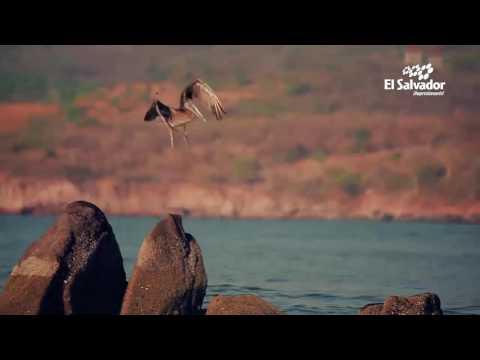 El Salvador Impresionante   Tour de Pesca Artesanal