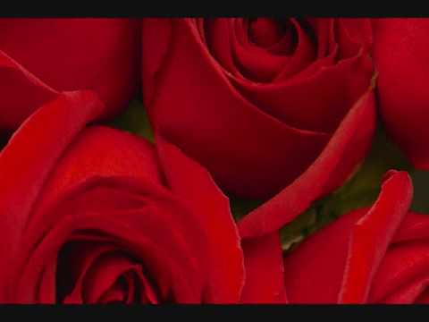 Outkast Roses