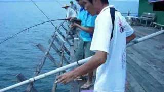 Fishing Hotboys Sibu Kelong w saeslsters