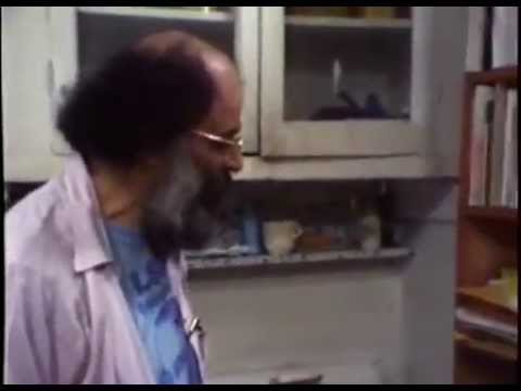 An Elegy for Allen Ginsberg 2006   FULL MOVIE