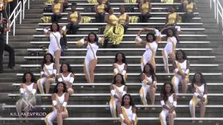 Download UAPB Marching Band - Golden Girls @AAMU - 2015 MP3 song and Music Video