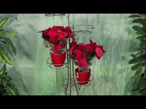 Кованые подставки и вышки под цветы (золотая патина) | Hitsad.ru