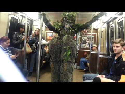 "A Tree grows on the Brooklyn ""A"" train."