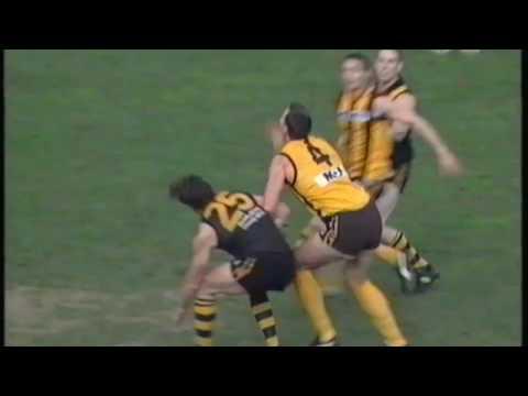 1997 AFL Round 15 - Richmond vs Hawthorn