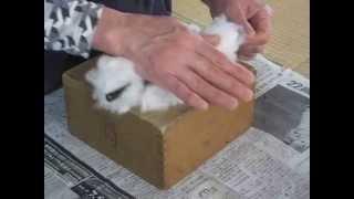 木綿糸紡ぎ