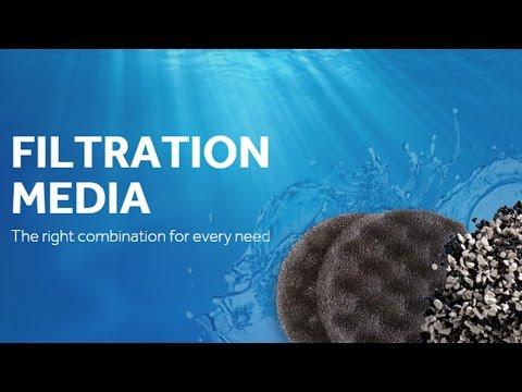 When To Change Your Aquarium Filter Media