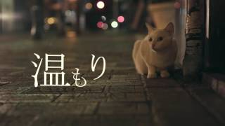 DJ RYOW『LETTERS feat. AK-69 & SUGAR SOUL』【Lyric Video】
