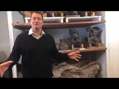 Paleontologist Matt Lamanna Live!