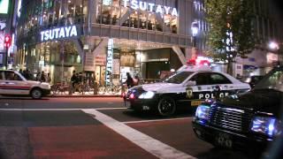 Tokyo Rozzers 東京警察