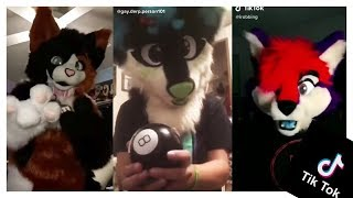 TikTok CRINGE FURRY EDITION