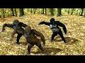 Funny Ape Song  Cartoon Parody  Dance Music Pop Songs  Dancing Gorilla Kids Cartoons movies 2017