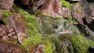 Ущелье реки Кора