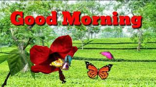 Good morning song WhatsApp status video Assamese song