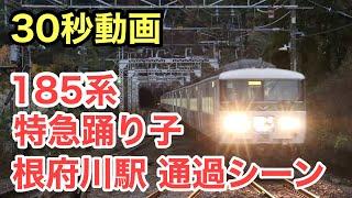 185系 特急踊り子 根府川駅通過