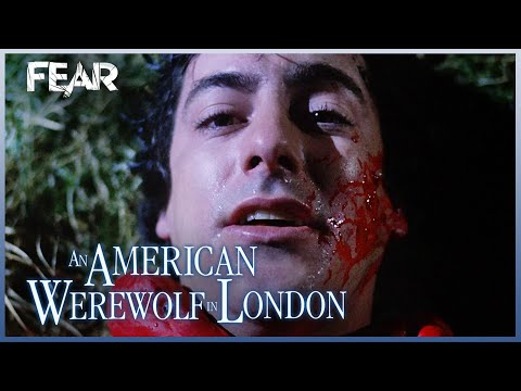 The First Werewolf Attack!   An American Werewolf In London
