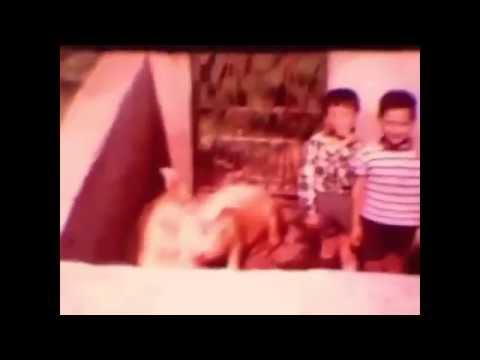CHUCK - Camel Lights (Music Video)