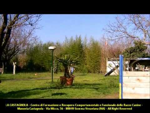 La Castagnola (2)