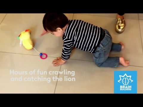 Brain Builders: Catch Me If You Can! Lion from People Toy Company