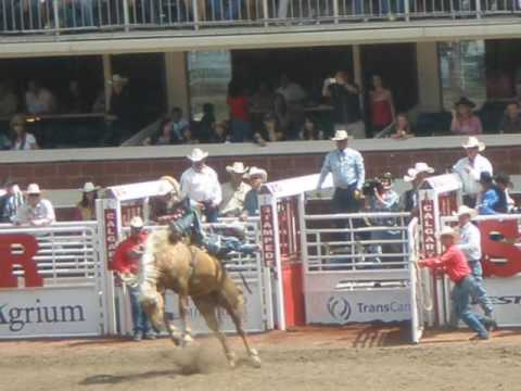 Calgary stampede fair July 3th--12th ,2009