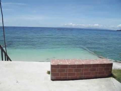 walhai-bucht-insel-cebu---philippinen-(mit-douglas)