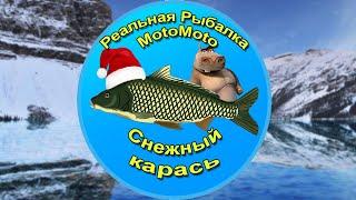 Как поймать Снежного карася на Ледяном озере Реальная Рыбалка