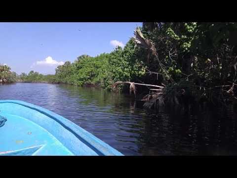 Boat Tour Through Laguna de Ventanilla near Mazunte, Oaxaca, Mexico.