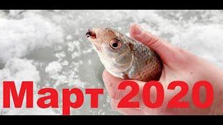 Рыбалка март 2020 В ожидание последнего льда Рыбалка на Белоярском водохранилище Зимняя рыбалка 2020
