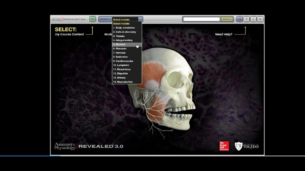 Anatomy & Physiology | REVEALED: Program Overview - YouTube