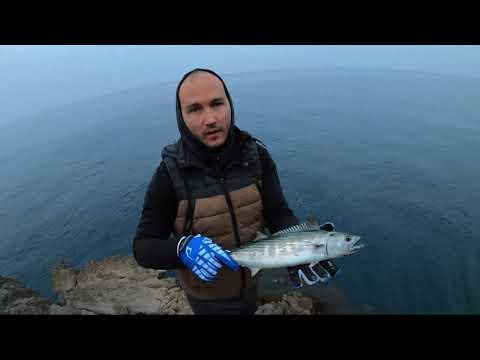 Montenegro Spinning - Weever Fish On Duo Press Bait Saira