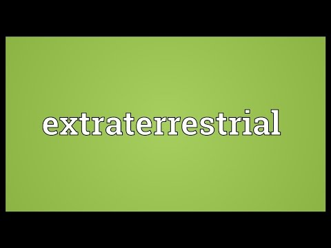 Extraterrestrial Meaning