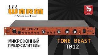 Топовый студийный предусилитель Warm Audio TB12 Tone Beast