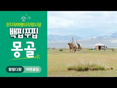 전지적여행사직원시점! 백핍쭈핍 몽골여행의 모든 것!