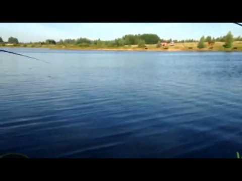 озеро синец рыбалка отзывы