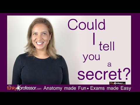 The Funky Professor - Inspiring Your Human Anatomy Journey