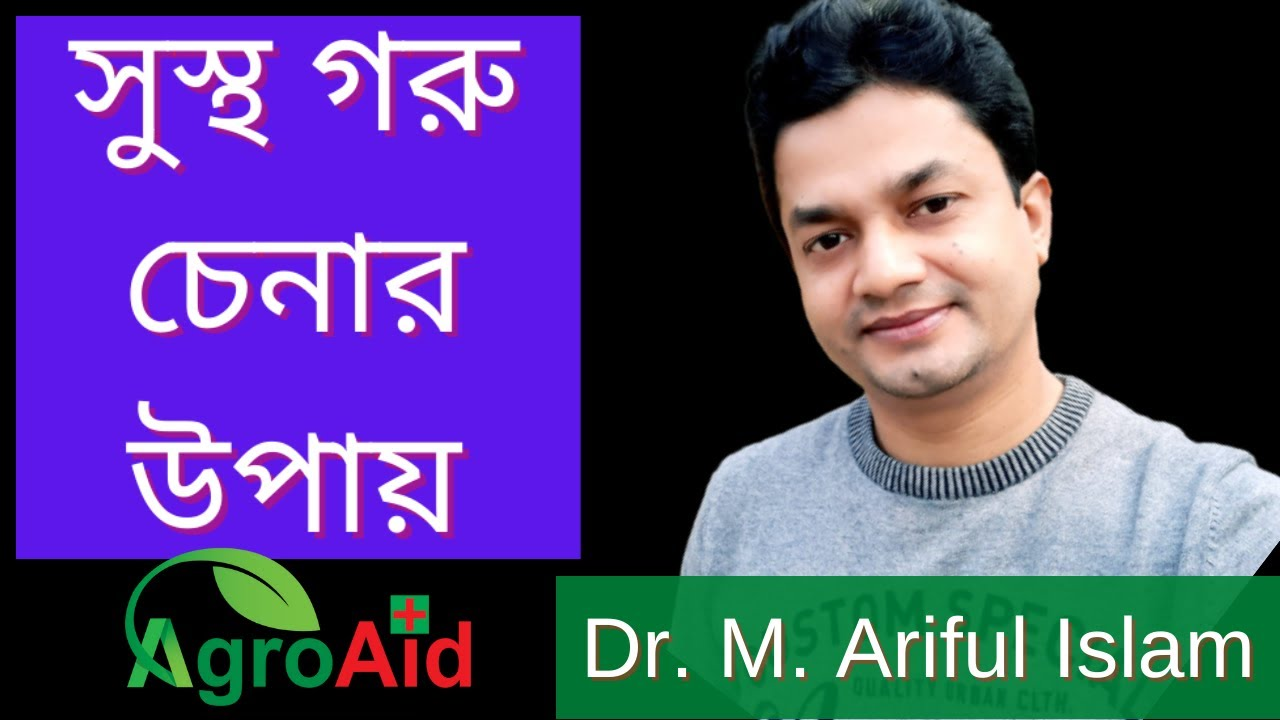 Download কোরবানির জন্য সুস্থ গরু চেনার উপায় I Korbanir Jonno Sustho Goru Chenar Upay #AgroAid