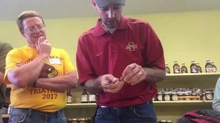 Chip Budding Demonstration