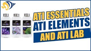 ATI Essentials, ATI Elements, and ATI Lab - What YOU Need to Know