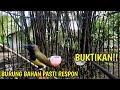 Pancingan Bunyi Sogok Ontong Bahan  Mp3 - Mp4 Download