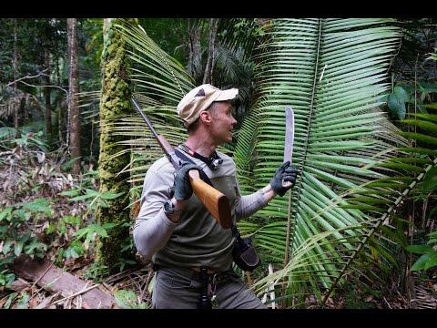 Бразилия: Амазонка, Пантанал, Рио и Игуасу.